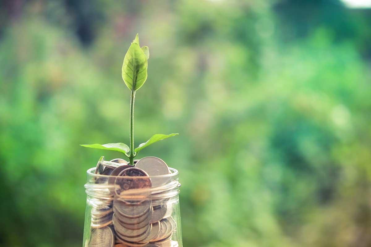 National Savings goes green